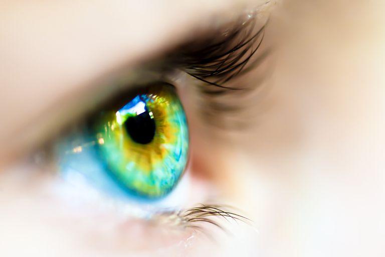 An eye observing monocular cues