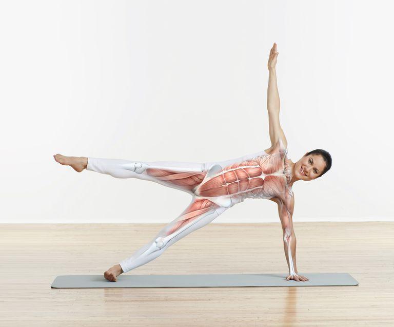 Yoga pose with anatomy