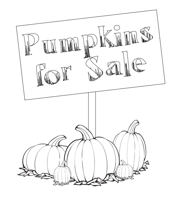 A Pumpkins For Sale Sign By Various Sizes Of