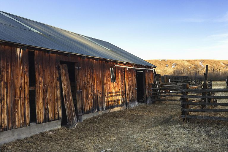 The Barnes surname typically relates to a barn, either someone who worked in or lived in or near a barn of significance.