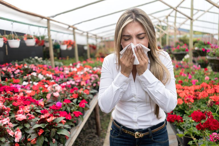 Woman at a greenhouse suffering from hay fever
