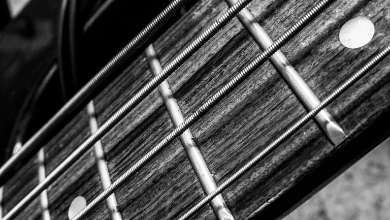 Strings & Frets on a Bass Guitar