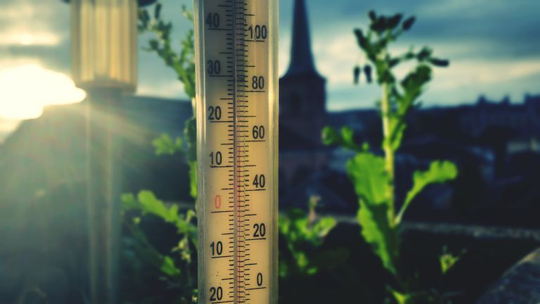Thermometer in garden