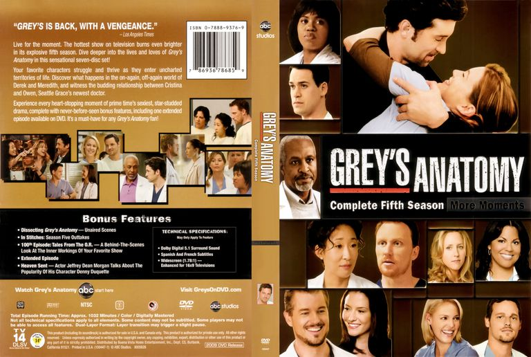 Greys anatomy guide