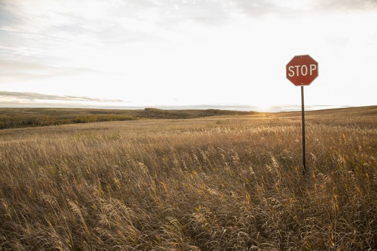 stop sign in field