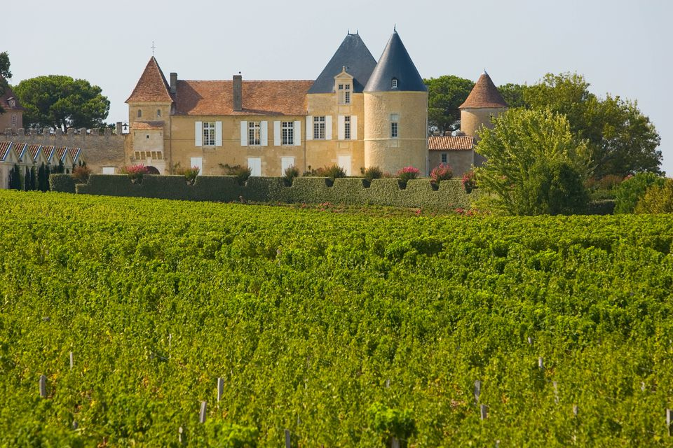 Chateau Yquem in Sauternes