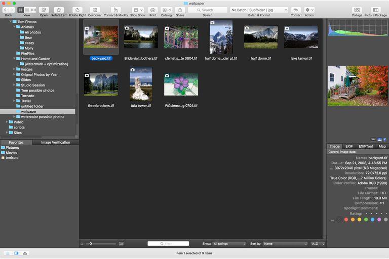 GraphicConverter 10 image browser