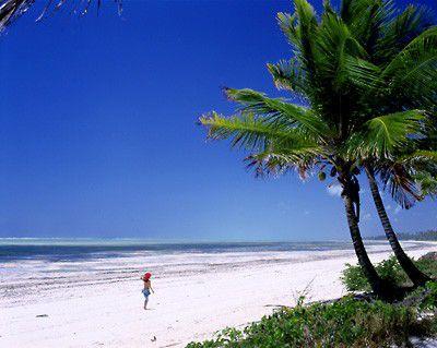 Beach in Zanzibar (Tanzania)