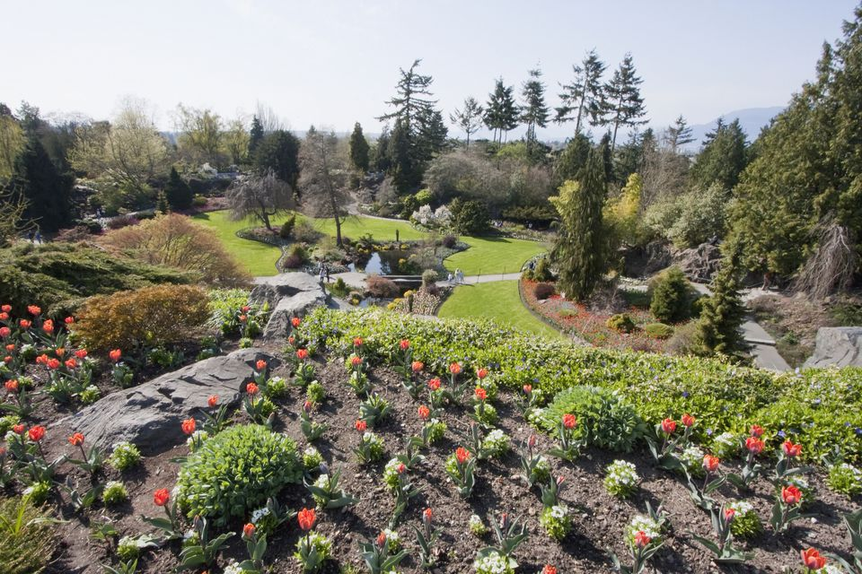 Flower beds in Queen Elizabeth Park, Vancouver, British Columbia, Canada