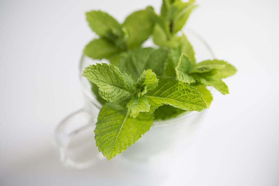 Springs of mint in a glass mug