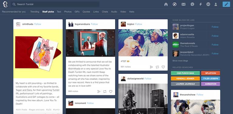tumblr search