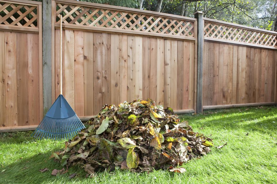 Pile of leaves and rake in backyard with fence
