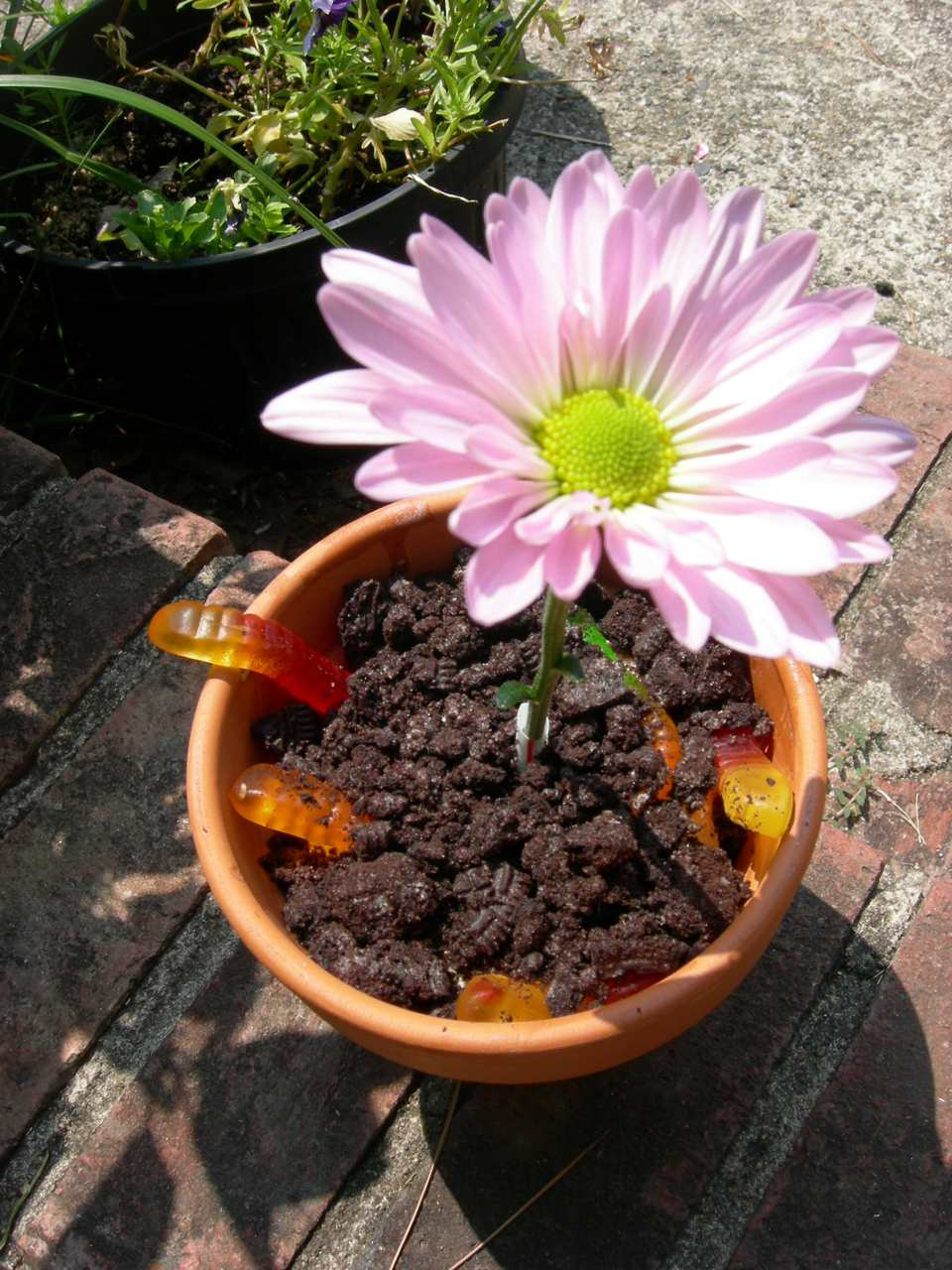 A pot of dirt cake with a fake plastic flower