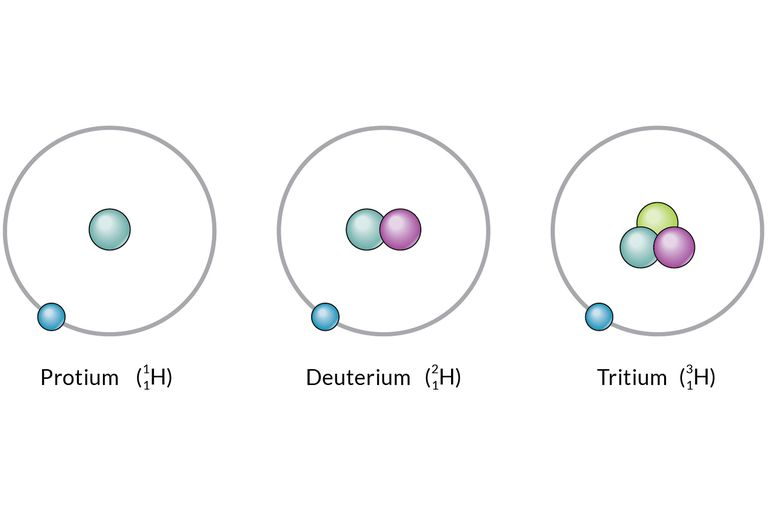 These are the isotopes of hydrogen.