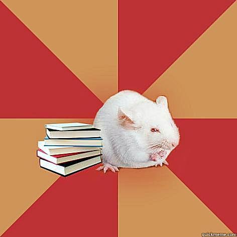 Science major mouse: No caption. The original meme image.