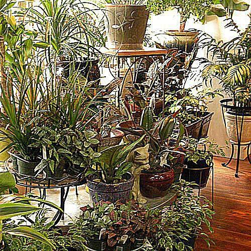 25 Small Urban Garden Design Ideas: Urban Gardens Ideas In Photos