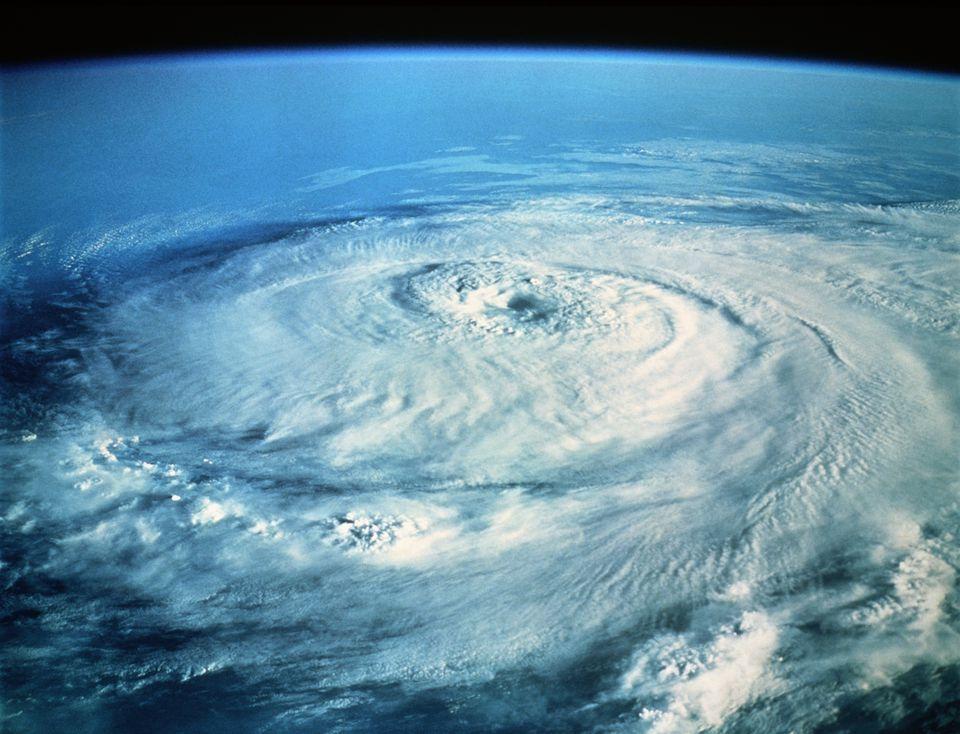Hurricane Elena Damage