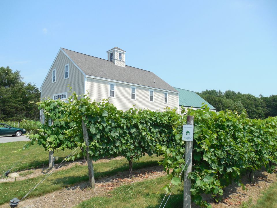 Jewell Towne Vineyards,