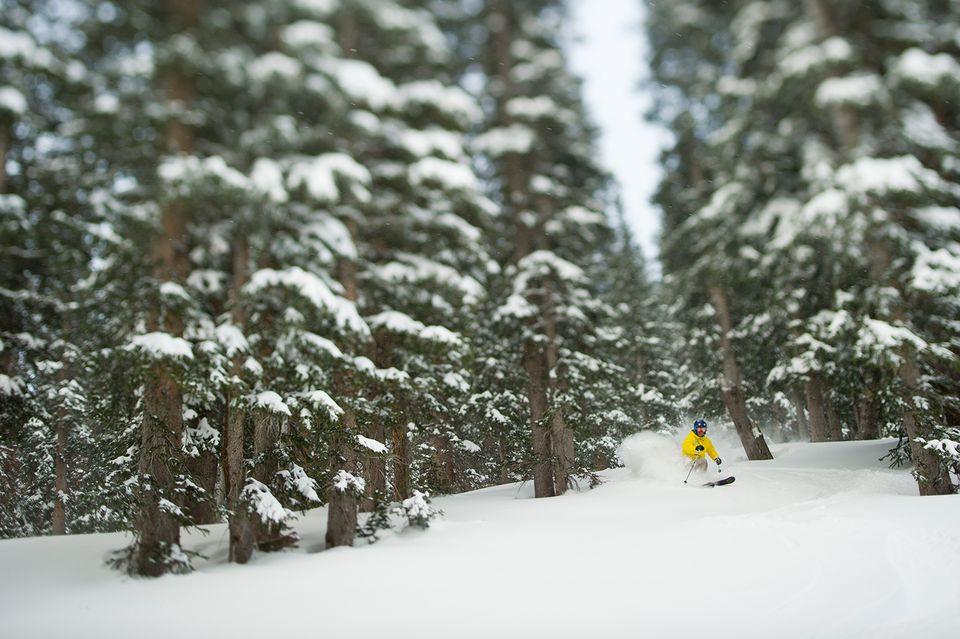 Man skiing at Snowbird in winter scenery.