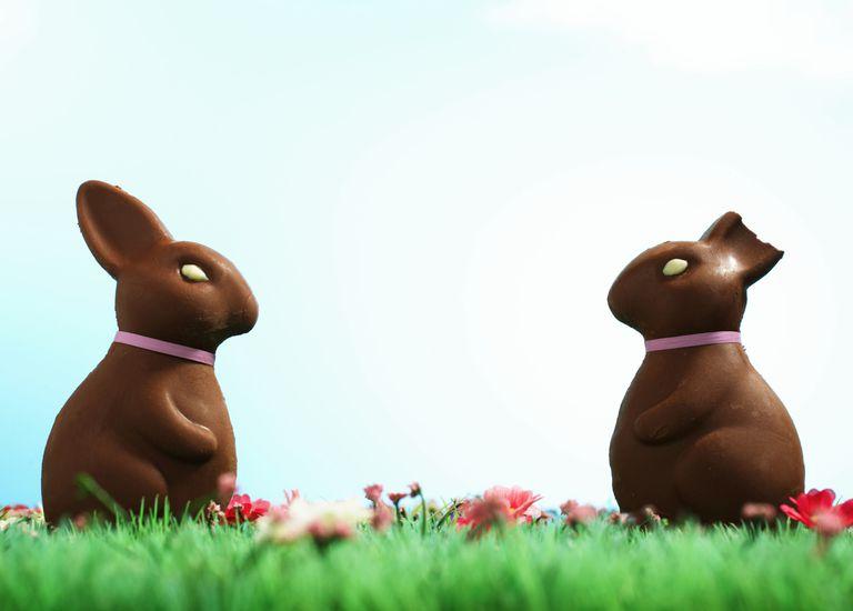 ChocolateRabbit_1500