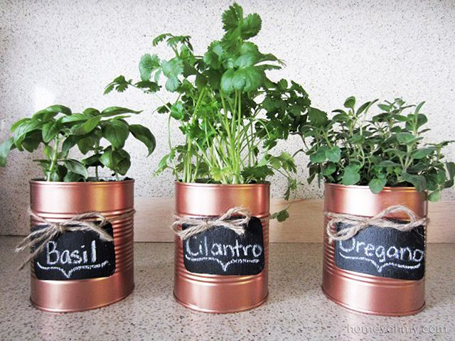 DIY Recycled Can Herb Pot