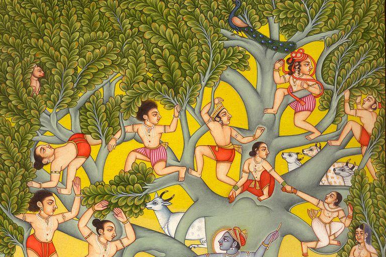 Indian philosophy or Darshanas