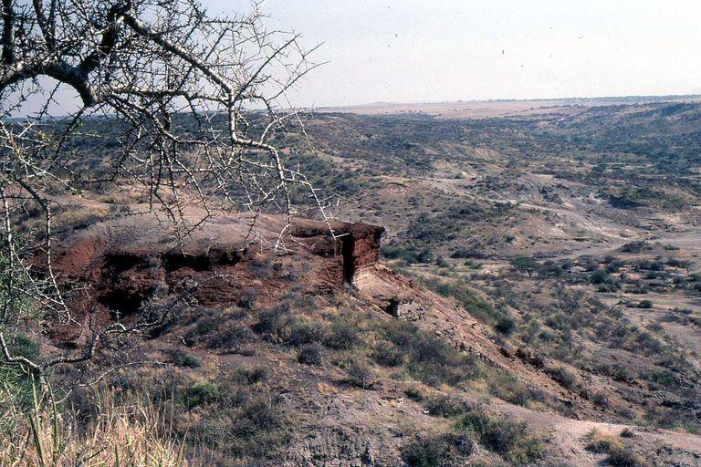 Olduvai Gorge, Tanzania