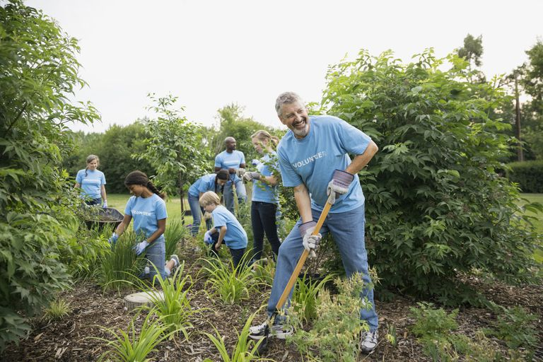 Volunteers working in garden