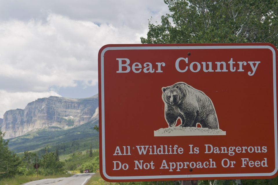 Grizzly bear warning, Glacier National Park, Montana, USA