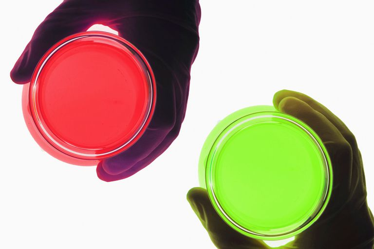 Benedict's solution changes from blue to green, yellow, or red to indicate the presence and amount of simple sugars.