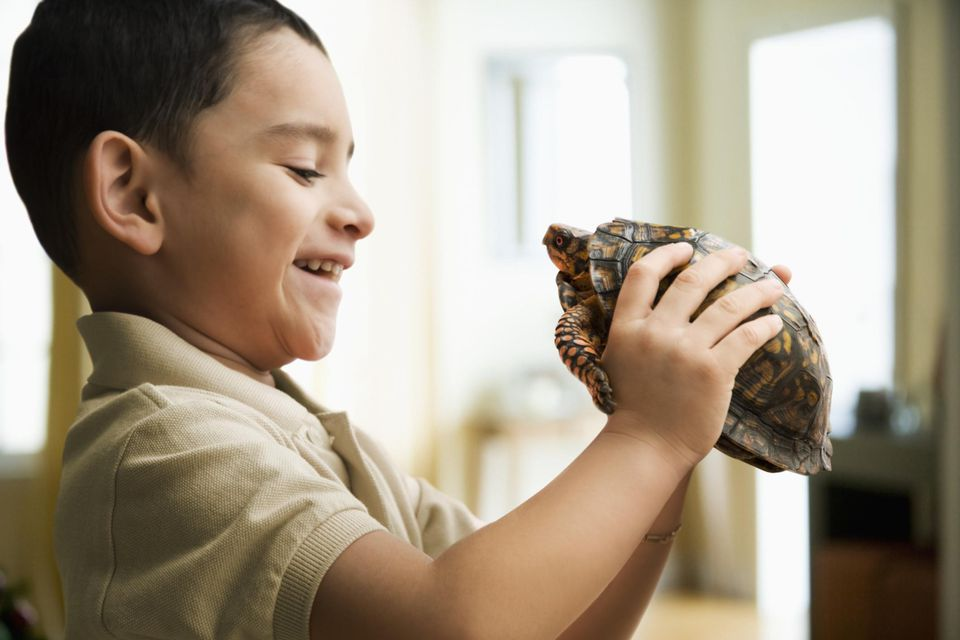 Boy (4-5) looking at turtle and smiling