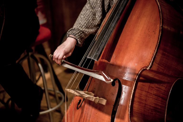 Double bass while playing.
