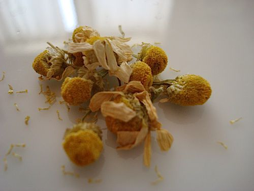 Chamomile is prized for its calming properties