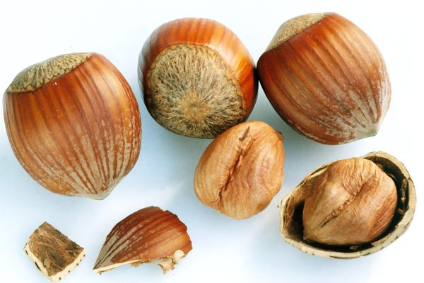hazelnuts with and without shell
