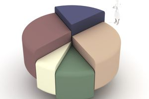 pie chart_asset allocation