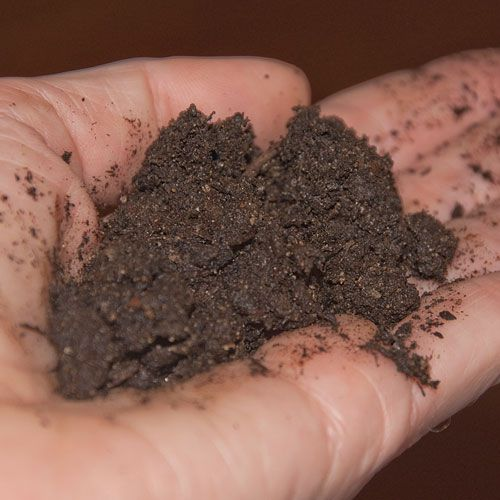 """What does """"When the is Soil Ready to Work"""" mean?"""