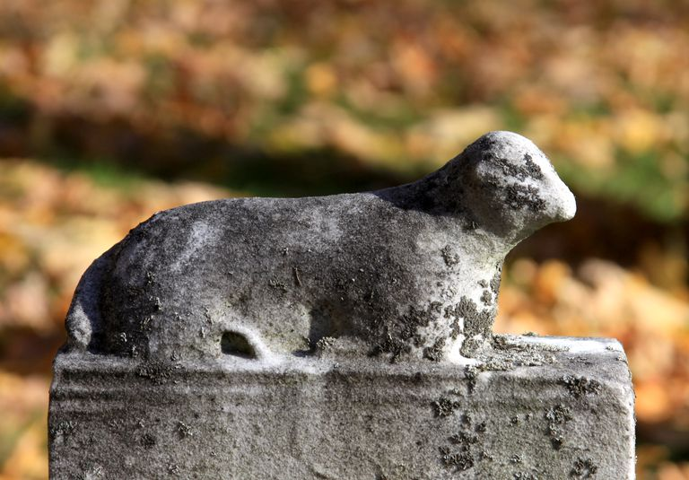 Lamb atop a cemetery tombstone