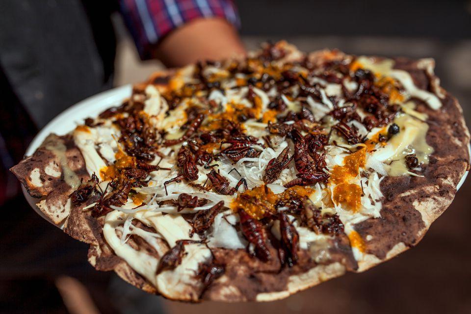 Tlayuda tortilla with edible Mexican Chapulines (grasshoppers)