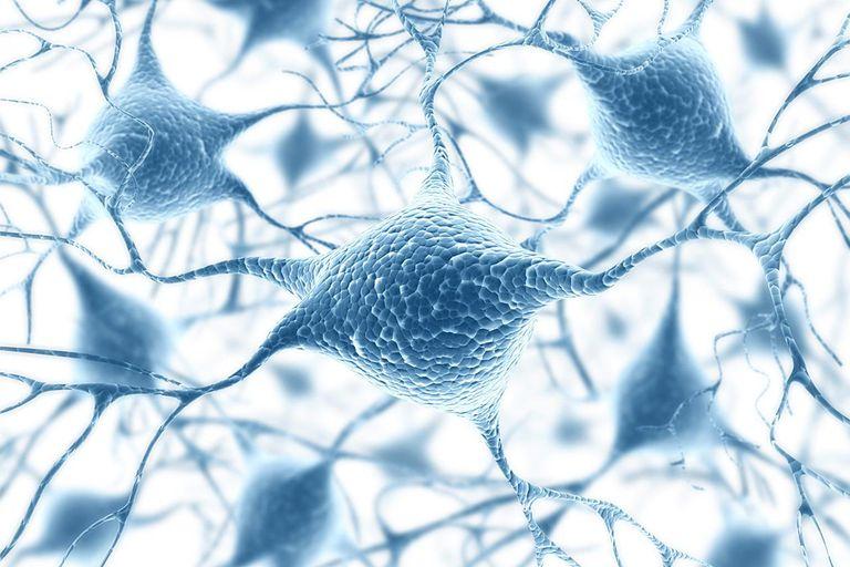 Neural network, computer artwork.