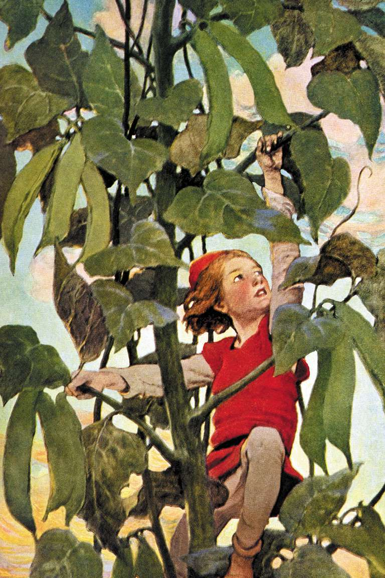 """Traditionally, the third-person point of view is the voice of the storyteller: """"Once upon a time there was a poor widow who lived in a little cottage with her only son Jack . . ."""" (""""Jack and the Beanstalk"""")"""
