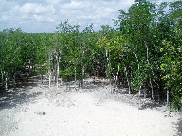 One of several sacbeob at Cobá