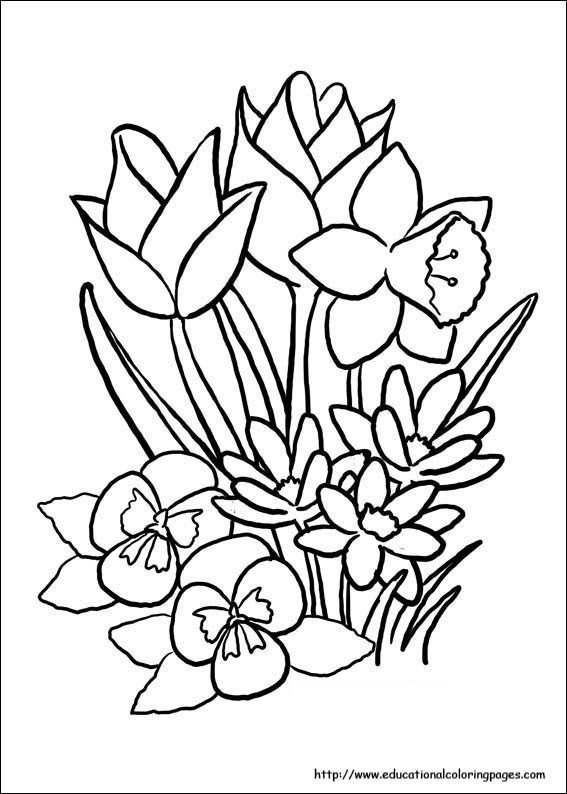 Free Spring Coloring Pages For The Kids