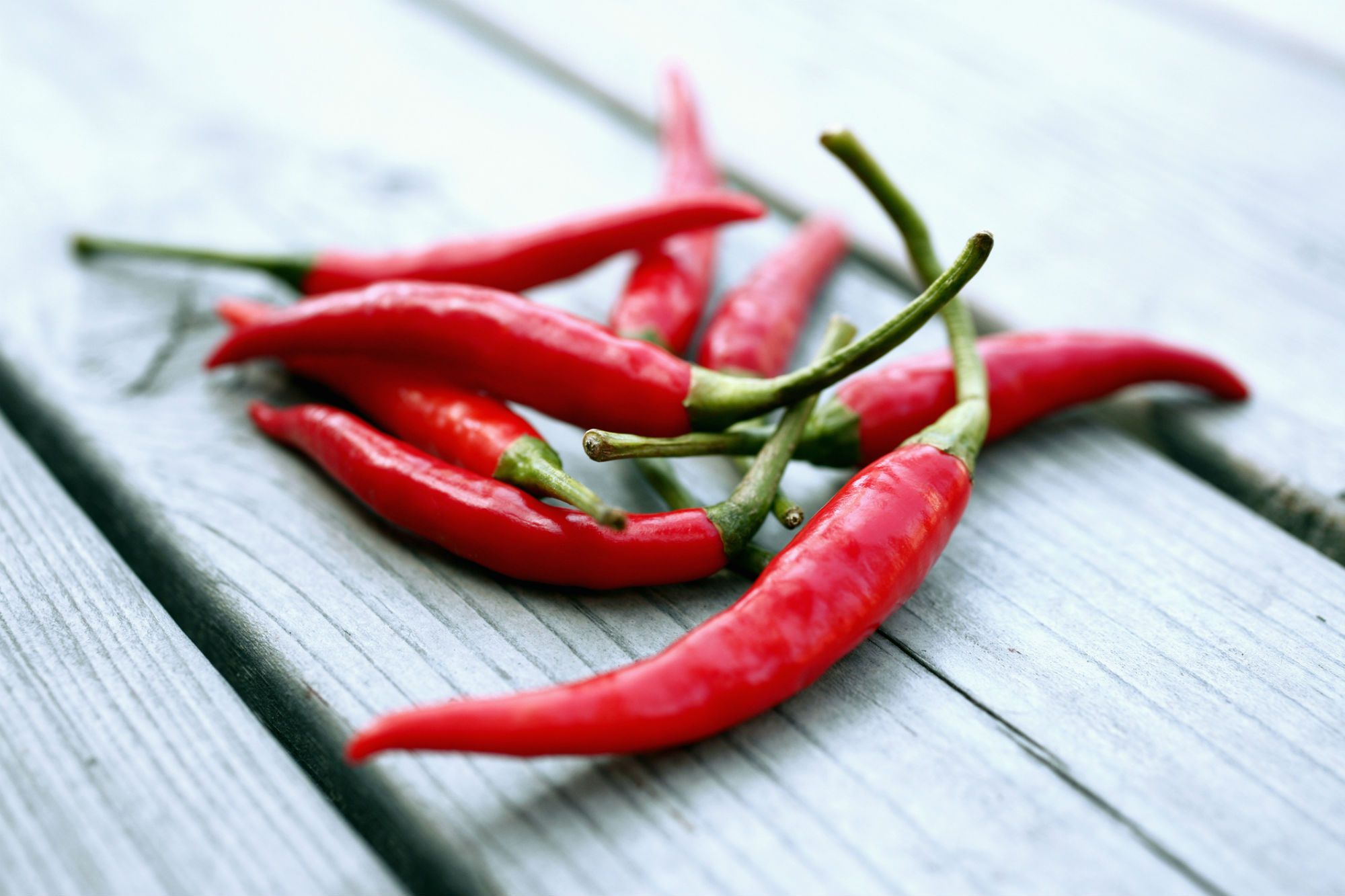 all about scotch bonnet hot chili peppers