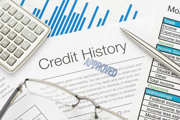 A credit history report