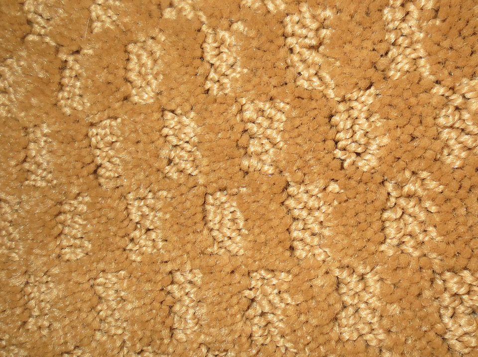 carpeting samples carpet that wont show footprints