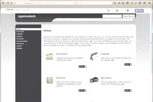 Screenshot of an Intranet website template.
