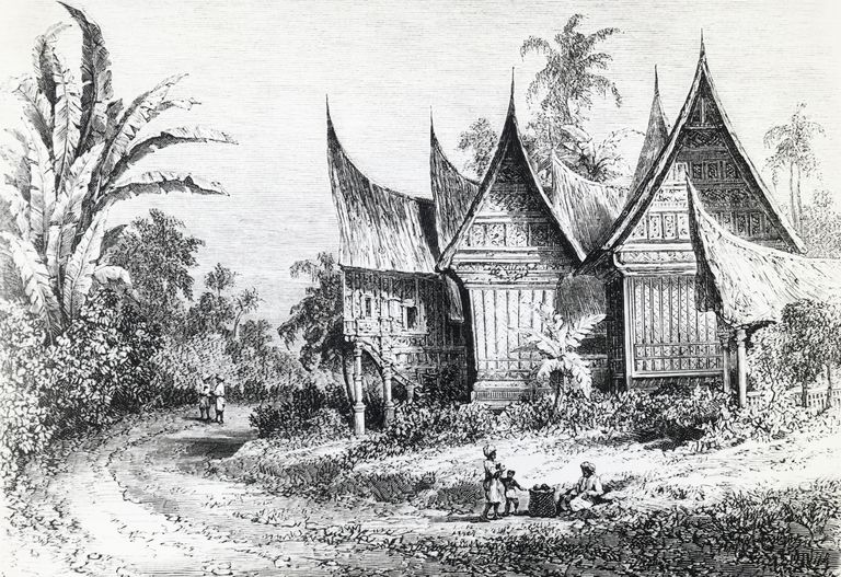 Alfred Russel Wallace's trip to Indonesia helped him define the Wallace Line