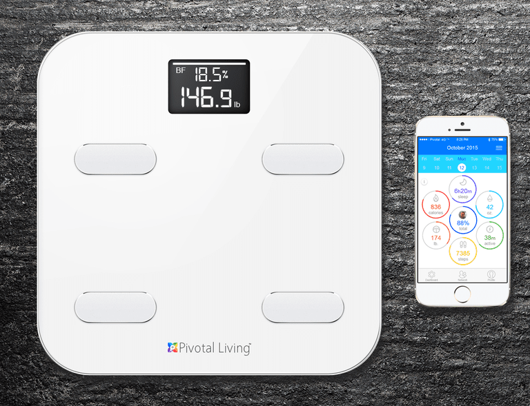 Best Smart Scale Review