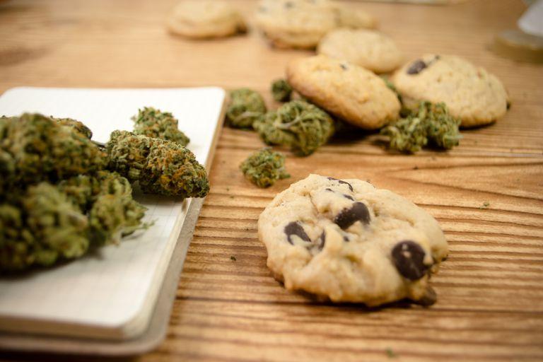Cookies notepad green