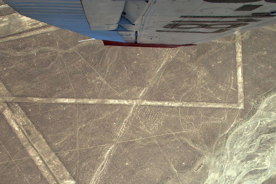 Nazca Lines, whale